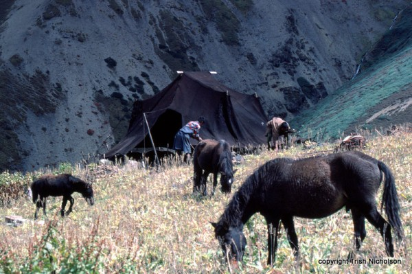 """yak hair tent Bhutan"""