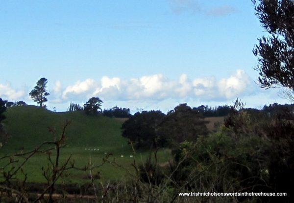 train of clouds