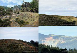 degraded landscape