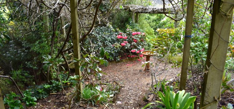 The Round Garden in the Five Acre Forest
