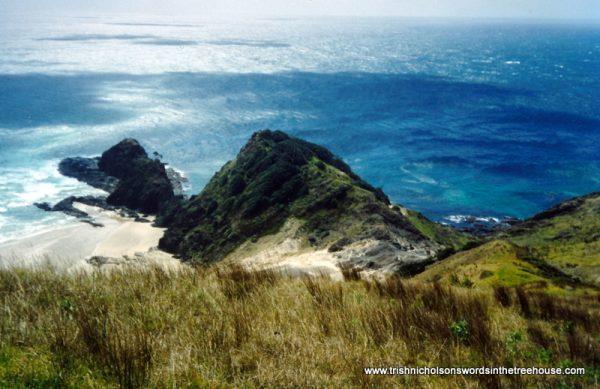 Te Rerenga Wairua